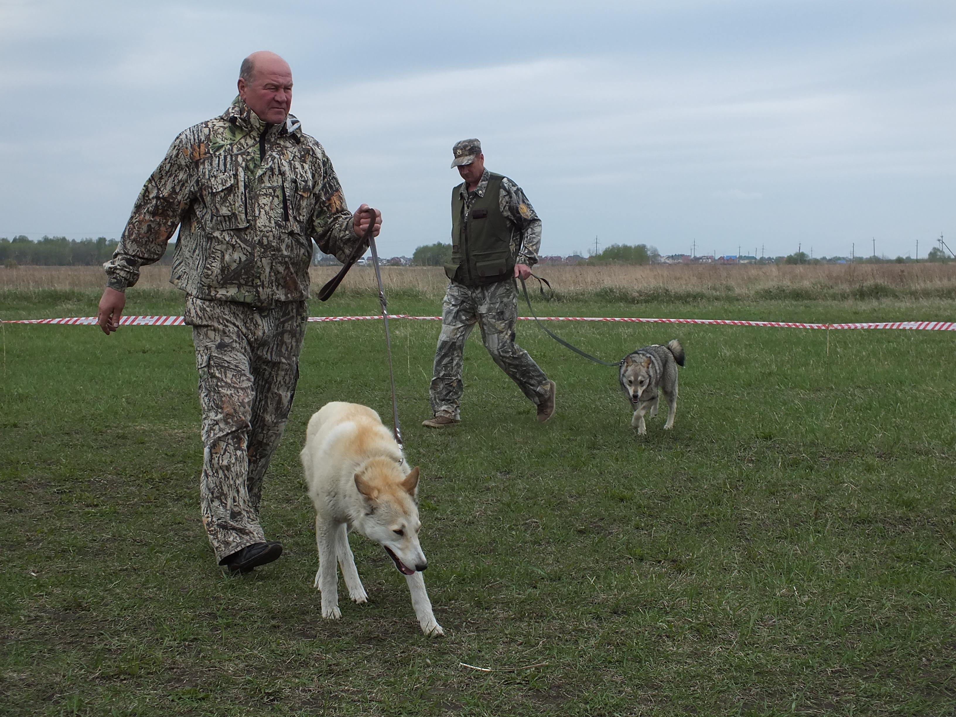 общество охотников и рыболовов все об охотничьих собак