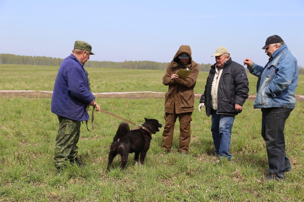 нолинское общество охотников и рыболовов